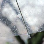 【糖尿病の運動療法】雨の日でも家の中で手軽にできる踏み台昇降運動
