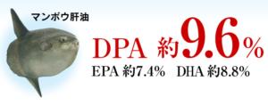マンボウ肝油のDPA保有量-画像