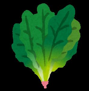 ALA(アラ)を含む食品-ほうれん草-画像